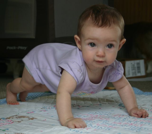 Abby crawling